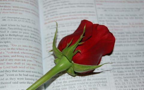 Ponovljeni Zakon 17: Biblija i Stari zavjet