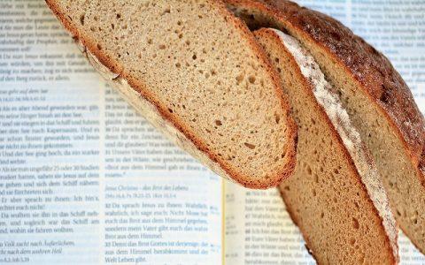 Knjiga o Jobu 41: Biblija i Stari zavjet
