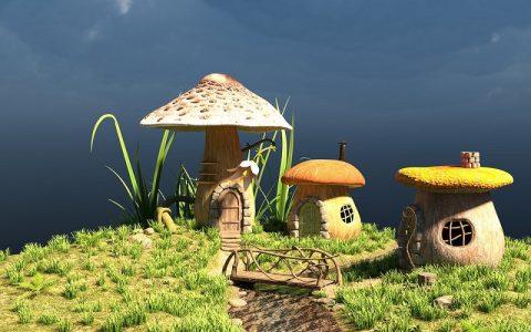 Zanimljivosti o gljivama za koje možda niste znali