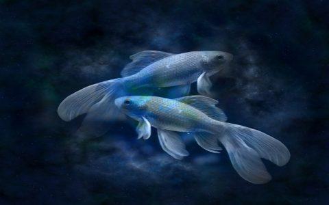 Merkur u Ribama: Misli koje mijenjaju život